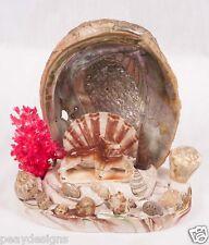 Vtg 50's Seashell Wolves Night Light TV Lamp Coral Albacore Shell SEE VIDEO