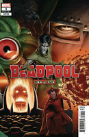 Deadpool Annual #1 Christopher Connecting Variant Marvel Comic 1st Print 2019 NM