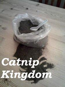 CATNIP - Premium Canadian - pure dried cat nip - You won't buy stronger!!!