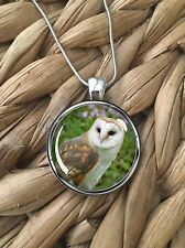 Barn Owl Nature Animals Wildlife Birds Glass Pendant Silver Chain Necklace NEW