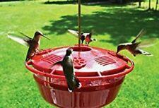 Ideology Humm-Yumm Hummingbird Protein & Nectar Feeder 2 Feeders In 1