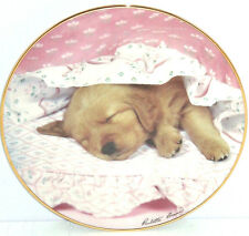 Golden Retriever Collector Plate Puppy Portraits Do Not Disturb Hamilton Dog