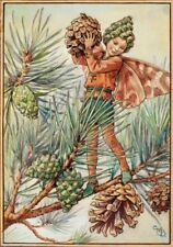 The Pine Tree Fairy : Cicely Mary Barker :  Art Print Suitable for Framing