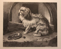 ANTIQUE STEEL ENGRAVING OF DOG BY EDWIN LANDSEER - DOG LOVERS/MAN'S BEST FRIEND