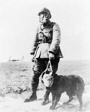 WWI FRENCH SOLDIER & DOG GAS MASK 11x14 SILVER HALIDE PHOTO PRINT