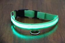 DoggyDaze LED Dog Safety Collars