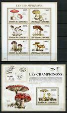 More details for comoros comores 2009 mnh mushrooms 6v m/s 1v s/s champignons fungi nature stamps