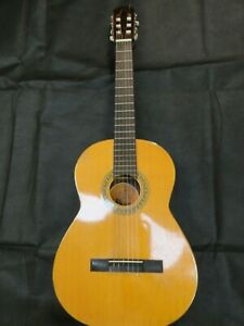 Vintage Spanish Guitar and case