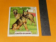 CHROMO 1936 CAFES GILBERT RACES DE CHIENS BERGER MALINOIS & D'ALSACE