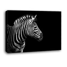 Home Decor Canvas 1 Panels Black and WhiteZebra Wall Art Canvas Prints No Frame