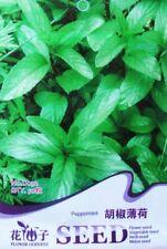 Original Pack 50 Peppermint Seeds Pepper Mint Organic Herb