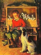 Antique Repro 8X10 Photo Hunting Print Boy Shotgun English Setter With Puppys