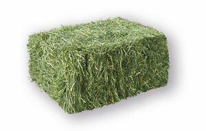 Heu 20kg Heu-Scheune® 1.Schnitt Heuballen Futter für Kaninchen Pferde Schafe...