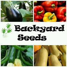 Spring Seed 4 Pack: Capsicum, Eggplant, Zucchini and Pumpkin Vegetable Seeds