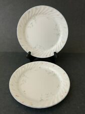Set Of Two Corelle English Meadow Dinner Plates.