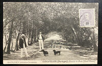 1906 Carcavellos Portugal RPPC Postcard Cover To Palmerston New Zealand Alameda