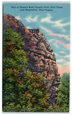 Mid-1900s Coopers Rock, Coopers Rock State Forest, near Morgantown, WV Postcard