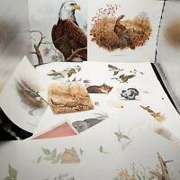 Vintage Bird Ephemera lot paper craft art junk journaling wild birds prints