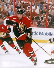 Chris Phillips Ottawa Senators Licensed Unsigned Glossy 8x10 Photo NHL (A)