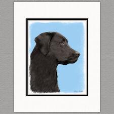 Labrador Retriever Black Lab Art Print 8x10 Matted to 11x14