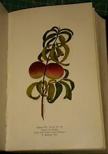 1914 NEW YORK STATE DEPARTMENT OF AGRICULTURE; BULLETINS 60 THRU 62