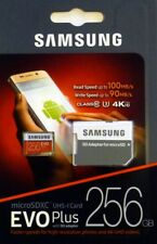 Samsung EVO Plus 256GB Class 10 microSDXC Karte