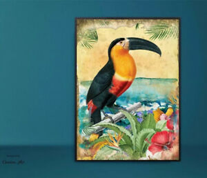 Shabby Chic Wall Art Summer Tropical Floral Vintage Picture A4 Print Toucan Bird