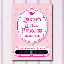 A6 Nursery, Baby and Childrens Princess Room Thermometers