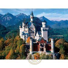 750 Piece Jigsaw Puzzle - Neuschwanstein Castle Fun Puzzle Hobby Play