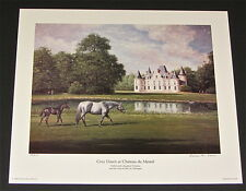 Richard Stone Reeves - Grey Dawn - Collectible Race Horse Print