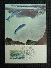 FRANCE MK FISH SALMON ANIMALS FISCHE LACHS MAXIMUMKARTE MAXIMUM CARD MC CM c967