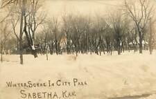Kansas, KS, Sabetha, Winter Scene in City Park Early Real Photo Postcard