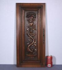 *French Antique Renaissance Revival Panel/Door in Walnut Wood with Serpent 1