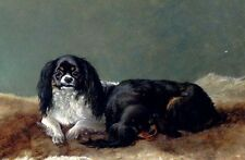 Lovely art No framed Oil painting dogs Two Kings Charles Spaniels free shipping