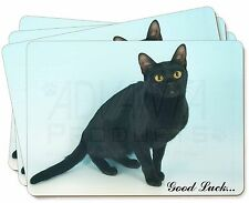 Bombay Black Cat 'Good Luck' Picture Placemats in Gift Box, AC-95glkP