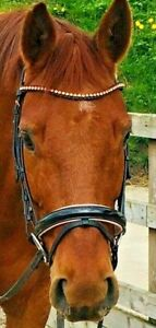 Rose gold patent leather bridle in black & Brown & optional matching headcollar