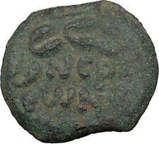 Porcius Festus  Jerusalem Nero Ancient  Greek / Roman Coin Palm branch   i36714