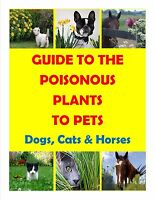 GUIDE TO THE POISONOUS PLANTS TO PETS ( DOGS, CATS & HORSES) MADE IN USA