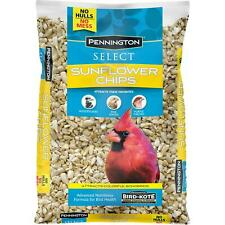New listing Wild Bird Feed Food Pennington Select Sunflower Hearts Chips No Shells 5 Lb Bag