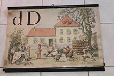 Original vintage pull down school chart of alphabet D - House