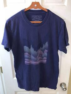 Patagonia Men Large L Slim Fit TeeT Shirt Blue Mountain Organic Cotton
