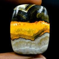 Cts. 39.20 Natural Bumble Bee Jasper Cabochon Loose Cushion Cab Gemstone
