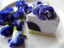 100% Original 100 BLUE BUTTERFLY PEA SEEDS CLITORIA TERNATEA VINE FLOWER.