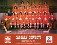 WHA Defunct Calgary Cowboys 1975 - 76 Color Team Picture 8 X 10 Photo Pic