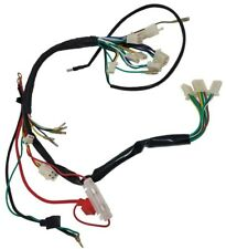 wiring harness 50cc-110cc 2 headlight chinese atv apollo aim-ex baja baha  buyang