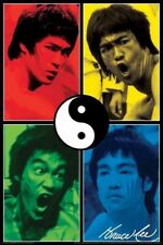 BRUCE LEE POSTER ~ YIN YANG COLORS 24x36 Martial Arts Movie Yin Yang Taijitu