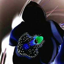 Rare Black Orchid Flower Seeds Exotic Orchid Home Garden Bonsai