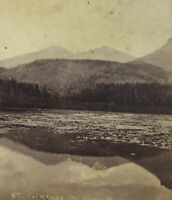 Antique Longs Peak Colorado Photo Stereoview Lily Lake Collier Denver 1890's
