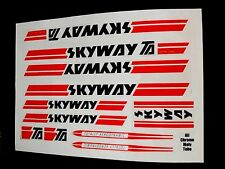 Skyway Bmx Stickers/Decals/Transfers Full Frame Set, Best On Ebay, Fast Post Wow