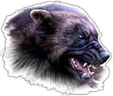 """Wolverine Snarl Wild Life Animal Forest Car Bumper Vinyl Sticker Decal 5""""X4"""""""